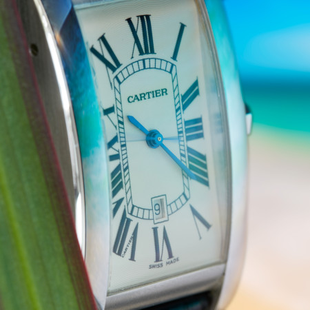 Cartier-lot-195